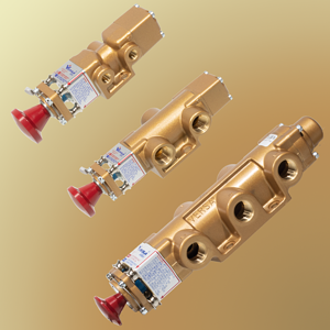 Lock_out_valves